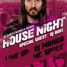 steve aoki party flyer template